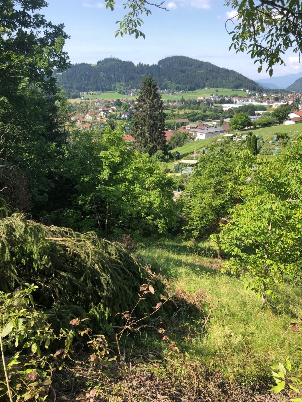 Feldkirchen, Kaernten, Baugrundstueck 1097m2 SÜD -WEST – Hanglage